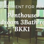■Location: BKK1 / Phnom Penh / Cambodia ■Rent Price: $4000/m