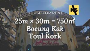 house for rent phnom penh