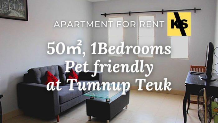 phnom penh room for rent