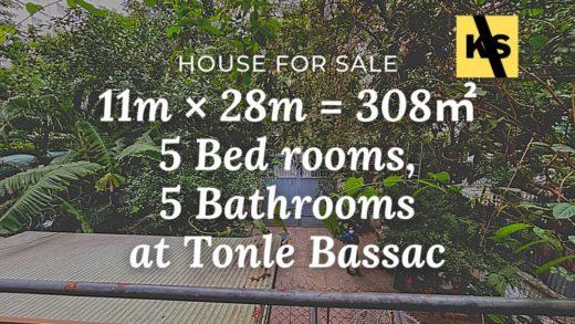 Villa for rent tonle bassac