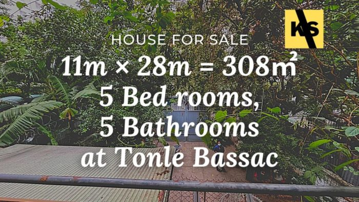 Villa for rent tonle bassac